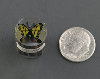 Swallowtail Boro Cane 9 grams - 117 I