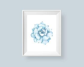 Succulent Print, Watercolor Cactus Printable Wall Art, Cacti Blue Art 5x7 8x8 8x10 Bathroom Wall Decor Instant Digital Download