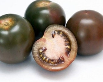 Tomato Black Russian Appx 300 seeds Vegetable