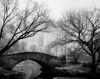 "Central Park Photograph, New York Print, Wall Art, Black and White Print, New York Art, NYC Art Print ""Night Fog"""