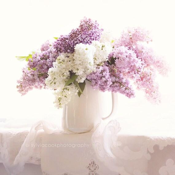 Lilac photographshabby chic decorstill life floral