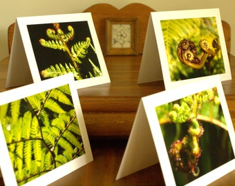 Australian Tree Fern ,Set of 4 ,Hand made ,Archival Quality,Blank ,Gift Cards,Mothers Day,Photography