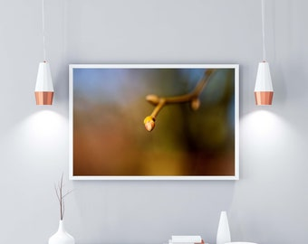 Photography Wall Art Poster Home Decor: New Life