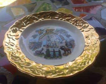 Vintage ceramic hand painted souvenir plate- Yellowstone Park