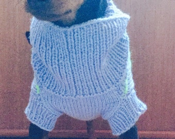 Knitting sweaters for dogs