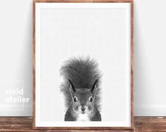 Black and White Woodland Nursery Animal, Squirrel Print, Forest Animal Wall Art, Baby Woodland Decor, Digital Print,Squirrel Photo Printable