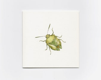 Green Insect- Mini Greeting Card