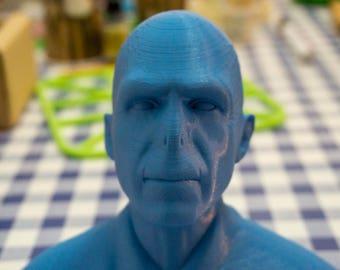 Voldemort Bust 3D Printed | Harry Potter Prop