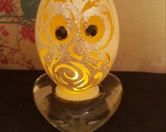 Owl goose egg