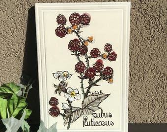 Italian Blackberry Floral Tile / Rubus Fruticosus / Large Rectangle / Signed / Ceramica Del Castelli Italy / Hand Painted Vintage - #H1057