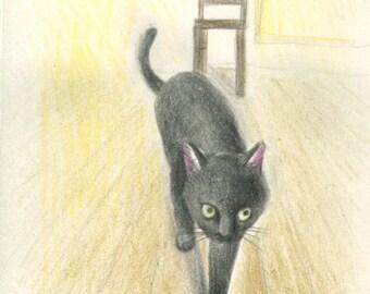 Cat original drawing - P004February2016