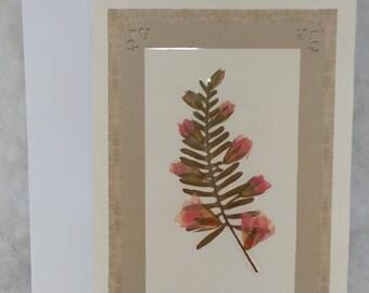 Pressed flower greeting card (blank) Fern
