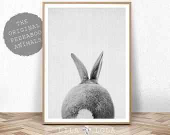 Rabbit Tail Print, Woodland Baby Shower Decor, Bunny Butt, Nursery Baby Animal Wall Art Prints, Large Printable Poster, Digital Download