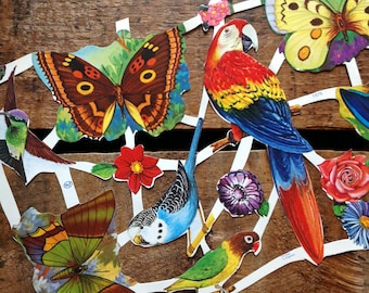 Vintage German Scraps - Butterflies and Parrots - Die Cuts, Cut Outs, Paper Ephemera, Vintage Birds, Vintage Butterflies, Animal Cut Outs