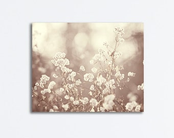 """Neutral Canvas Photography - beige cream nature light brown gallery wrap botanical wall art prints white floral photograph, """"Lace"""""""