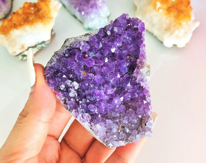 Amethyst Crystal / Amethyst Cluster / Amethyst Geode w/ Reiki / Home Decor