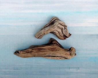 natural raw driftwood sculpture wood art supply 1078