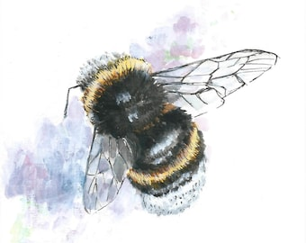 A4 Bumble Bee Illustration PRINT