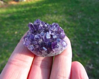 Amethyst Cluster - Raw Amethyst Geode from Uruguay