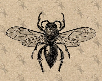 Vintage image Queen Bee Honeybee Instant Download black and white Digital printable picture clipart graphic transfer burlap HQ300dpi