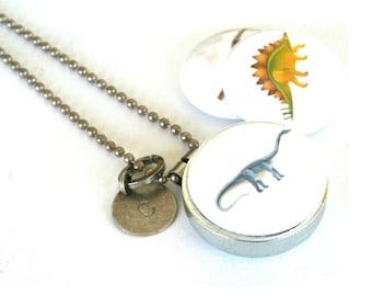 Dinosaur Necklace, Dinosaur Locket, Boy Jewelry, Girls Love Dinosaurs, Too, Jurassic, Tyrannosaurus REX, Eco Friendly, Magnetic, 3 in 1 Set