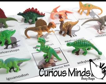 Montessori Dinosaur Object Match - Matching miniature dino figurines to photo card.  Montessori 3 part activity.