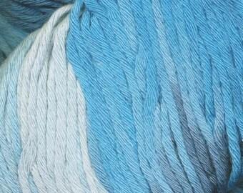 Araucania Yumbrel DK Yarn - Handpainted - 218 Yards - Combed Cotton - Larcomar