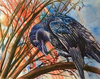 Raven's Aternoon Snack Print
