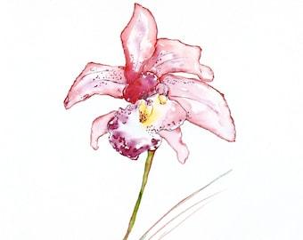 Tulip Print, Red Flower Print, Watercolor Print, Watercolor Flower Print, Florals, Original Watercolor