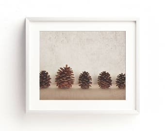 "minimalist nature art, minimalist photography, nature photography, pine cones, large art, large wall art, neutral wall art - ""The Lineup"""