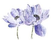 Blue Flower Painting - Pr...