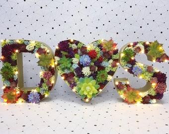Flower letter light, Succulent Couples initials with heart,  Letter Light, succulent letters, light up letter, monogram letter, ampersand, l