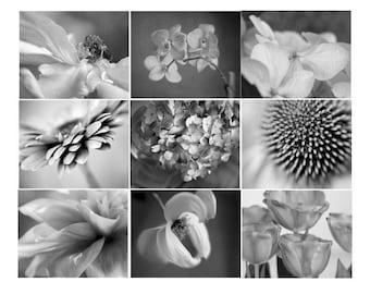 Black and white photography set of 9 gallery wall prints, floral nature photos, dark grey wall art set, botanical prints, SALE discount set