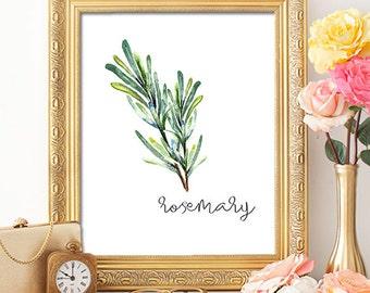 Herbs Rosemary - 8x10 - Printable Art, Dorm Decor, Wall Art, Kitchen Art, Home Decor, Herb Art, Herb Prints, Herb Wall Art