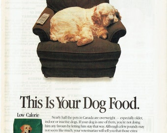 1989 Advertisement Purina Dog Chow Cocker Spaniel Couch Low Calorie Food Pet Store Vet Veterinarian Rescue Office Groomer Wall Art Decor