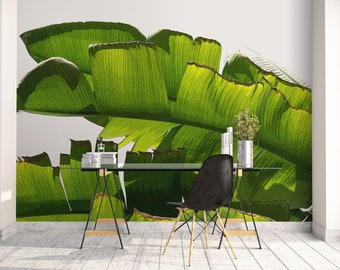 Banana leaf mural, Large wallpaper, Tropical wallpaper, Peel and stick, Bedroom decor, Wall decal, Self Adhesive print, Green. MG047
