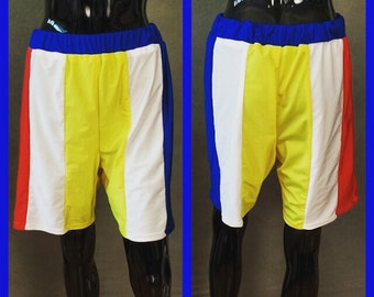 """MADE TO ORDER Katy Perry """"Beach Ball"""" Superbowl Costume Inspired Shorts for Men"""