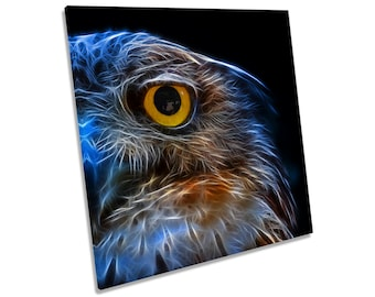 Owl Abstract CANVAS WALL ART Square Print