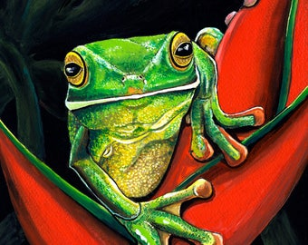 Jewell of the Forest - Tree Frog 2