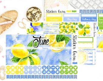 June Monthly Kit // June 2018 Monthly Planner Sticker Kit // Erin Condren Planner Stickers ECLP [M005B]