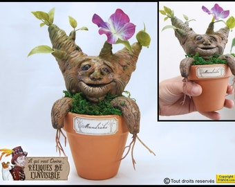 Mandrake potted mandrake root witchcraft harry potter mandragora curiosity cabinet