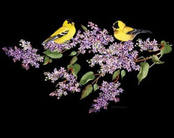 Goldfinch and Lilacs Womans Quality T Shirt 19525HD2