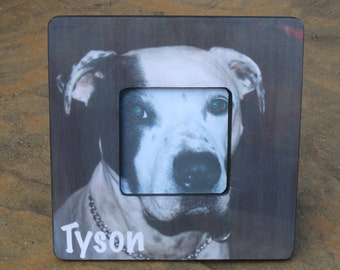 """Pet Memorial Frame, Personalized Pet Memorial Picture Frame, Custom Cat Frame, Pet Collage Picture Frame 8"""" x 8"""", Unique Gift"""