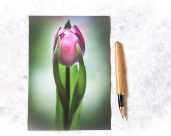 Tulip photo card | birthday card | photo card | flower card | for her | for nature lover | pink flower | spring
