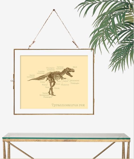Tyrannosaurus Rex Wissenschaft Geschenk Idee Nerd Dinosaurier