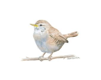 Bird Watercolor Painting - Wren - 10 x 8 (11 x 8.5) Giclee Print - Woodland Animal - Bird Art