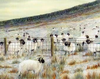 "Greetings card: ""A frosty reception"" - sheep card, animal card, snow scene, winter birthday card from an original painting by Dave Marsh"