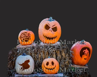 Pumpkin Png, Real Pumpkins, Halloween Png, Photoshop overlay, Holiday Png, Jack-O-Lantern, Hay Bale, Transparent background, Scary Pumpkins