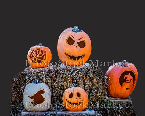 Pumpkin Png, Real Pumpkins, Halloween Png, Photoshop overlay ...