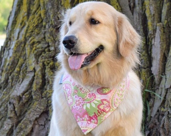 Personalized Paisley Dog Bandana  - Reversible Pet Scarf -  Puppy Dog Gift by Three Spoiled Dogs
